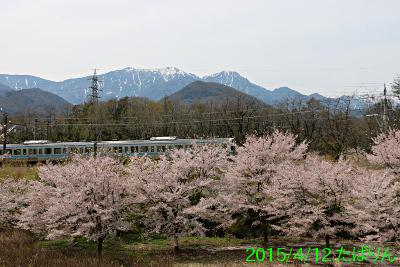 shidaikubo_2.jpg