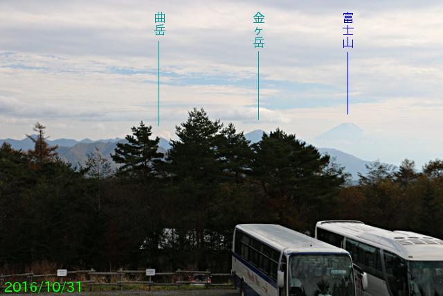 shizenfureai_3.jpg