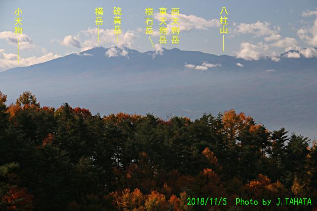 hishino_2.jpg