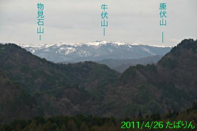 nokura_2.jpg