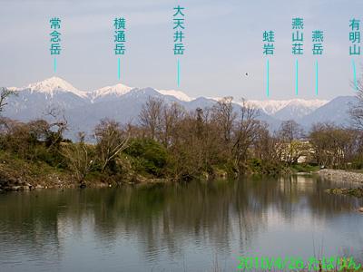 hakuchou_2.jpg