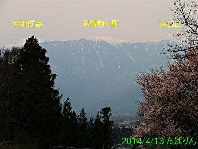 fukuyo_2.jpg