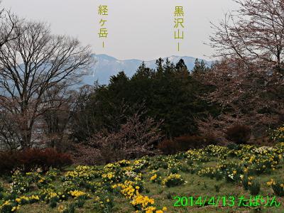 fukuyo_3.jpg