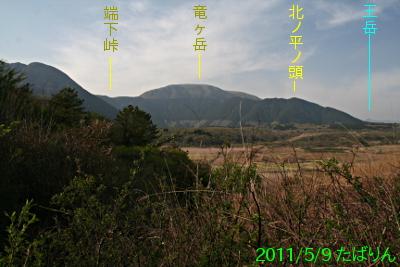 nebara-kyuukei_2.jpg