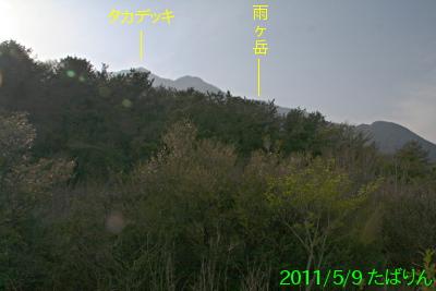 nebara-kyuukei_3.jpg