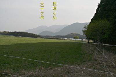 nebara-kyuukei_5.jpg