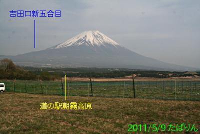 nebara_1.jpg