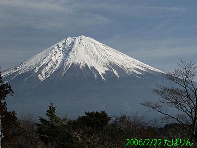 shiraito_1.jpg