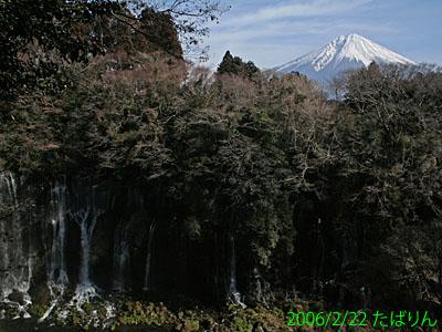 shiraito_2.jpg