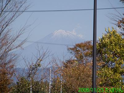 makinohara_2.jpg