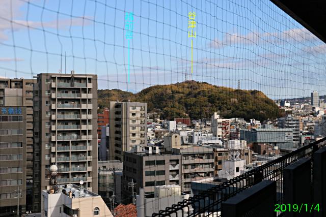 shinshizuoka_9.jpg
