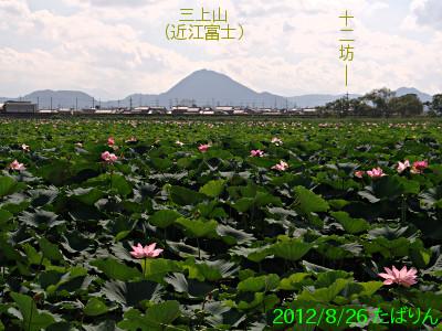 karasuma_11.jpg