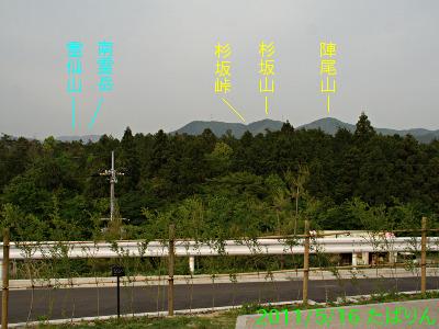 tagasa_3.jpg