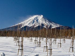 2012年1月31日の富士山写真
