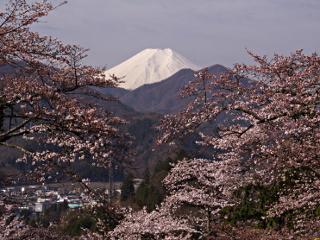 2012年4月13日の富士山写真