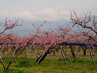 2012年4月21日の富士山写真
