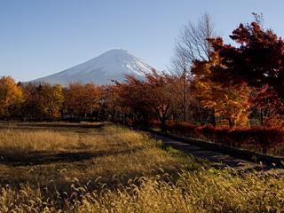 2012年11月12日の富士山写真