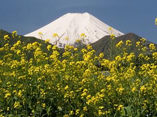 2013年5月7日の富士山写真