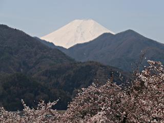 2014年4月7日の富士山写真