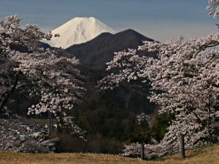 2014年4月11日の富士山写真