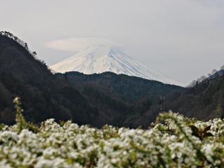 2015年3月29日の富士山写真