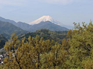 2015年4月24日の富士山写真