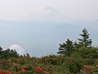 2015年6月15日の富士山写真