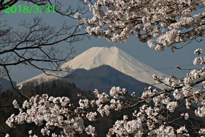 2018年3月31日の富士山写真