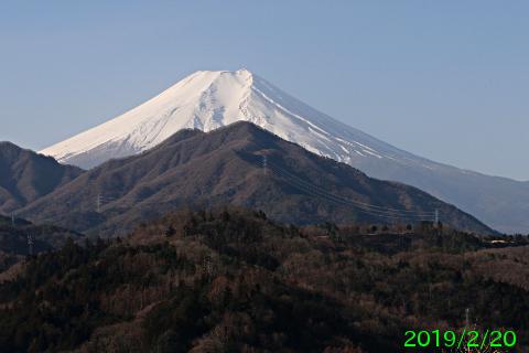 2019年2月20日の富士山