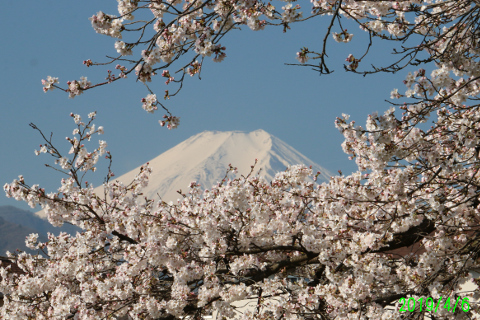 2019年4月6日の富士山