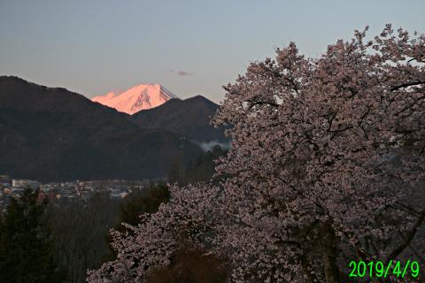 2019年4月9日の富士山