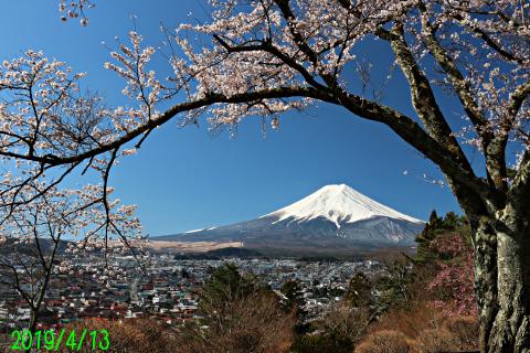 2019年4月13日の富士山