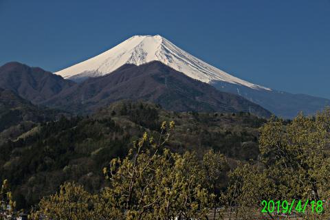 2019年4月18日の富士山