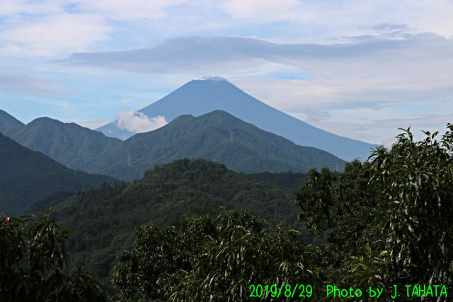 2019年8月29日の富士山